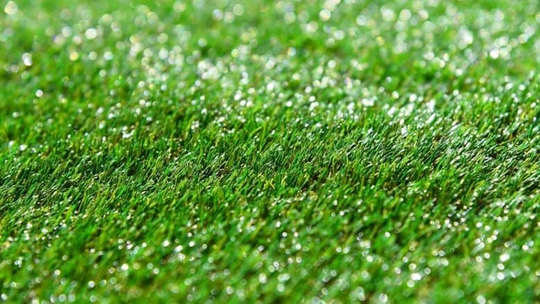 Prevent Lawn Discoloration with Synthetic Grass for Pets in Tracy